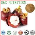 GMP supply fabricante 100% natural y de alta calidad Extracto de Mangostán Cosméticos 200g