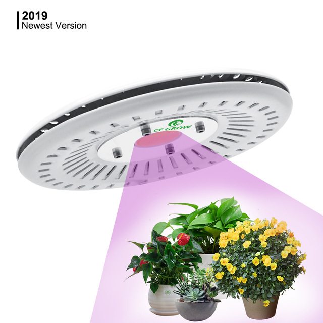 COB Led Grow Light Full Spectrum 100W UFO led grow light lamp waterproof IP67 for Vegetable Flower Indoor Hydroponic Greenhouse