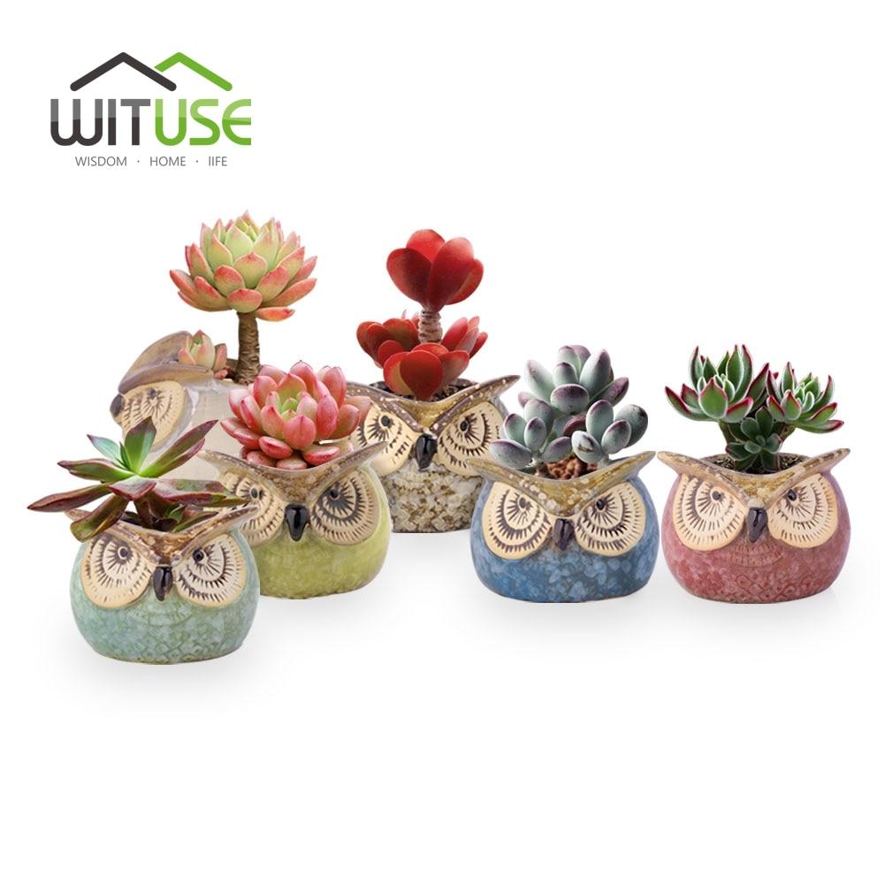 WITUSE 6 stks Mooie Bloempot Vetplant Uil Klei Tuin Pot Gemakkelijk - Tuinbenodigdheden