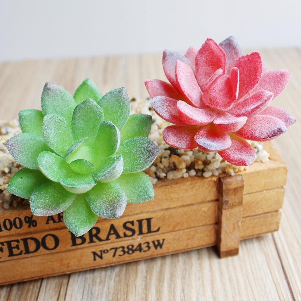6pcs Real touch Mini Succulent plants Cactus plant decorative flower for table decoration Frost lotus