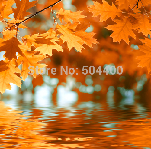 5x7ft Newborn backdrop photography background autumnal scenery backdrop yellow autumn baby background  D-2780 300cm 200cm about 10ft 6 5ft fundo harp moonlight candles3d baby photography backdrop background lk 1859