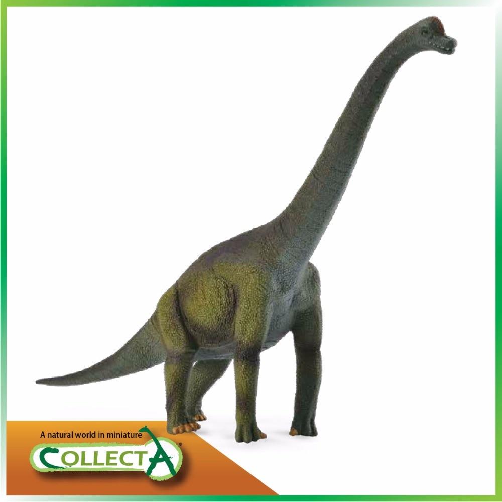 CollectA Brachiosaurus Dinosaur Model Classic Toys For Boys Children Gift 88121 bwl 01 tyrannosaurus dinosaur skeleton model excavation archaeology toy kit white