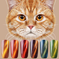 DEAL LIMITED QUANITY HURRY NEW 2017 1Pcs Newest Chameleon Magnet Nail Gel Soak Off UV Gel Polish lacquer nail glue