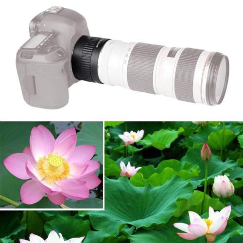 Auto Focus 2x lentille AF 2X grossissement téléplus téléconvertisseur Extender pour Canon EOS 1100D 1200D 1300D 450D 550D 650D 750D 800D