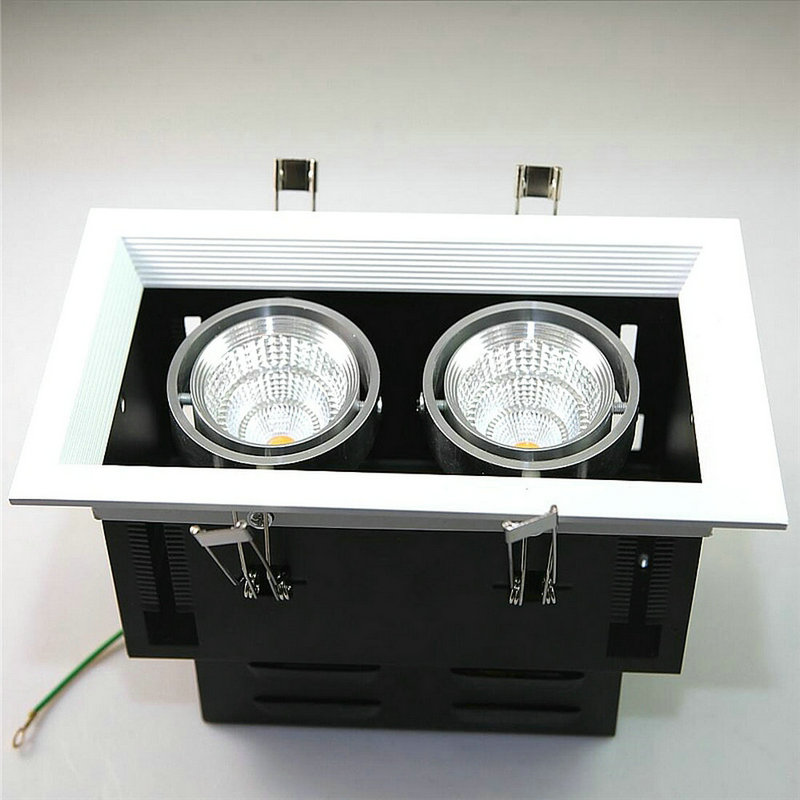 2PCS/lot Double 2*10W LED Downlight Ceiling lamp light COB 20W Warm white/cold white 110V 220V 240V SNYKA