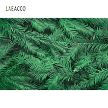Laeacco Tropical Palm Tree Leaves Green Backdrop Photography Backgrounds Customized Photographic Backdrops For Photo Studio