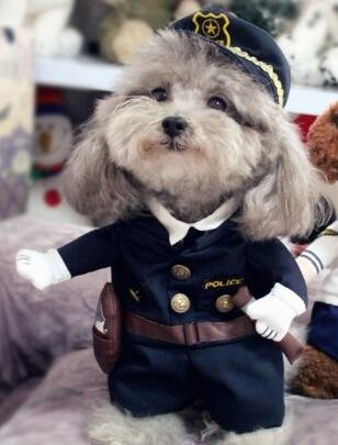 Funny-Pet-Costume-Suit-Dog-Clothes-Puppy-Uniform-Outfit-Cat-Clothing-Nurse-Doctor-Policeman-Pirate-Cowboy