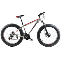 脂肪バイク26インチアルミ合金、24速度変更クロスカントリー、雪のビーチバイク