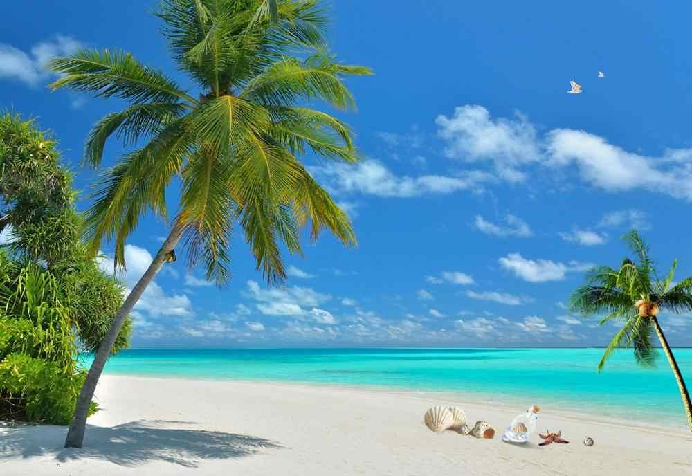 Waterval Luxe Verduisterende 3D Gordijn Voor Woonkamer kantoor Slaapkamer kokospalm gordijnen strand gordijnen
