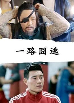 《一路囧逃》2017年中国大陆喜剧,动作电影在线观看