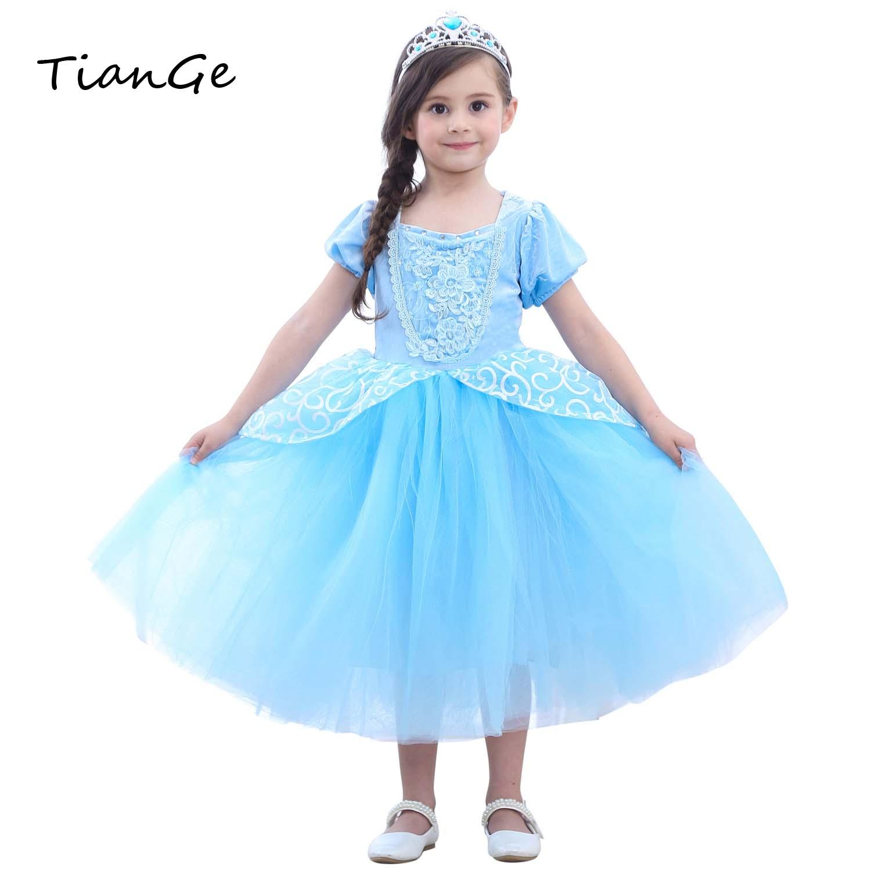 2018 Cinderella Girls Gowns Children Role Play Costume -8128