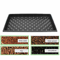 Behogar 2PCS 54x28x5cm Reusable Seedling Seed Starter Growing Trays for Garden Greenhouse Succulent Wheatgrass Microgreens