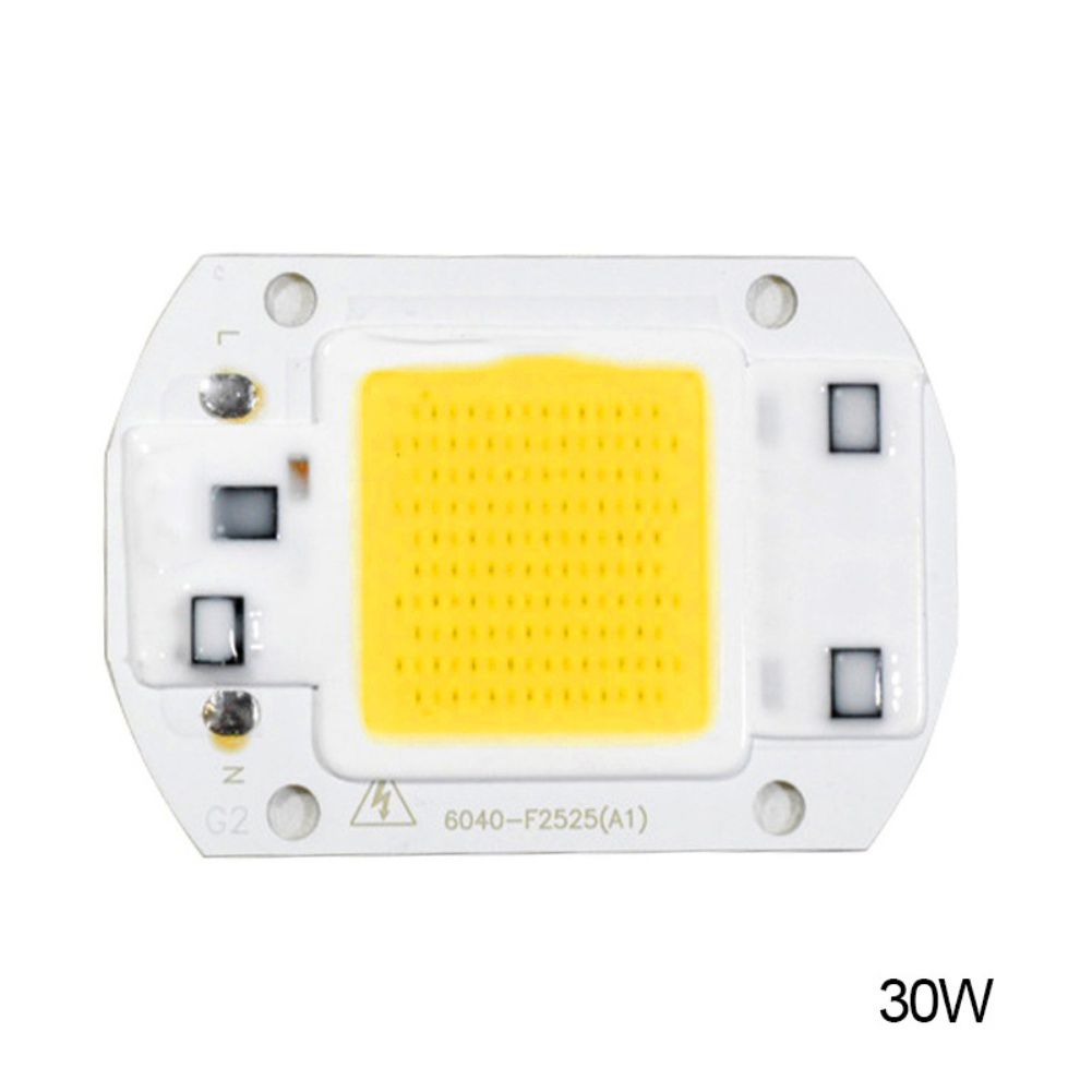 Yard Light 20W 30W 50W LED Chip 220V LED COB Bulb Chip Input IP65 Smart IC Fit For DIY LED Flood Light LED Modules High Quality