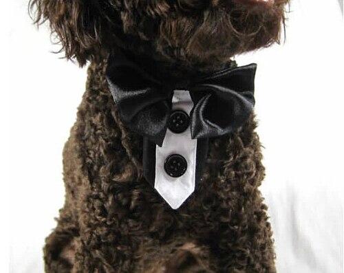 Stile Britannico Pet Dog Cat Fashion Bowknot Cravatte Doggy Bello Del Partito Cravatta Animali Costume Cucciolo Grooming 1 Pz S-xxl Spedizione Libero Tecnologie Sofisticate