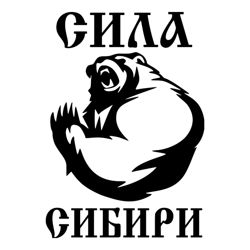 CS-249#21*15cm The Power Of Siberia Funny Car Sticker And Decal Silver/black Vinyl Auto Car Stickers