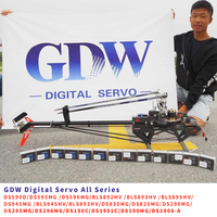 GDW Digital Brushless Servo HV All Series