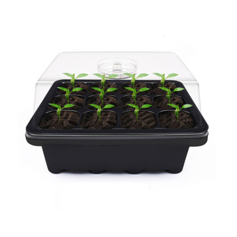 Seedling-Tray Plant-Pot Nursery-Boxes Grow-Box Indoor-Hydroponics-System Plastic To 6/12-Holes