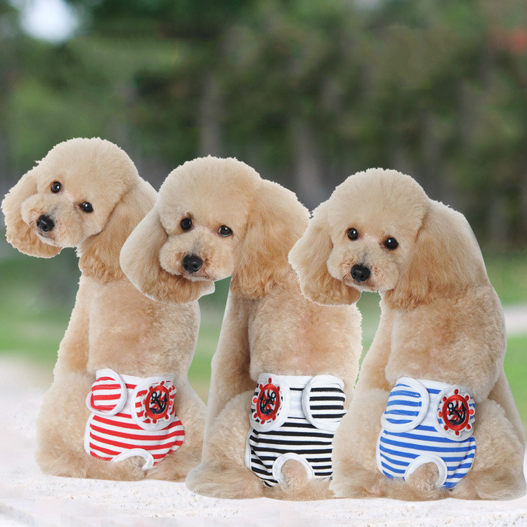 New Small Female Cute Pet Dog Striped Panty Sanitary Pants Underwear Hygienic Pant Short Pet Physiological Panties Briefs S-XL