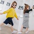 2017 nova primavera meninas malha saias busto saias versão Coreana de calças livre shiping