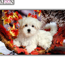 Животные diy Алмазная картина вышивка крестиком белая собака
