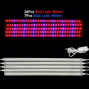 Image 2 - Fitolamp lâmpada led de crescimento espectro total, lâmpadas led de 5730, 50cm para plantas, para efeito hidroponia, sistema de lâmpadas phyto, tenda