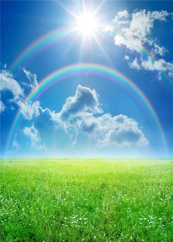 Rainbow Photography Backgrounds Sunshine Vinyl Photo Backdrops for Baby Grass Studio Props 5x7ft or 3x5ft  JieQX465