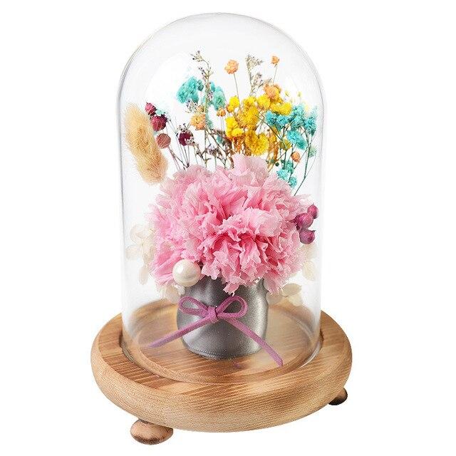 5 Types 18cm Multi Colour Hot Preserved Fresh Flower Rose Carnation
