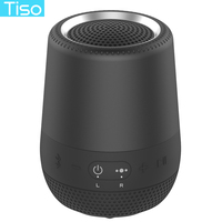 Tiso 30 hours playtime wireless Bluetooth speaker high quality 8W Inner magnet loudspeaker+80mm passive bass portable