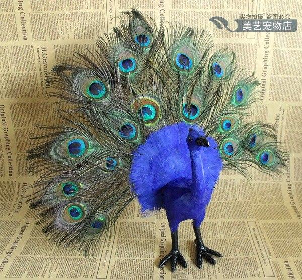 simulation colourful peacock model,polyethylene&fur large 35x12x40cm handicraft toy home decoration Xmas gift b3860
