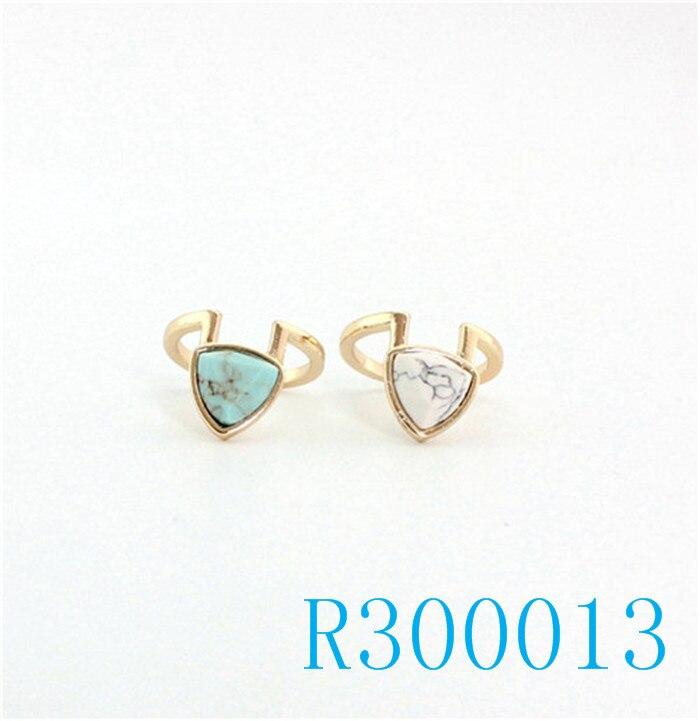 R300013