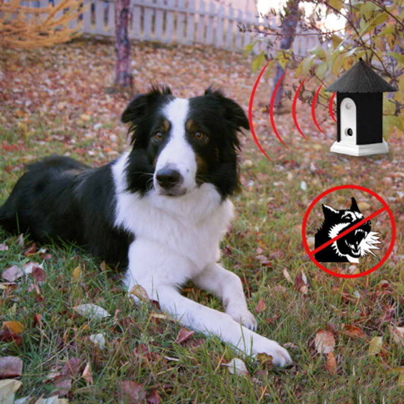 Pet Dog Ultrasonic Collares antirrugas Repelente para perros al aire - Productos animales - foto 6