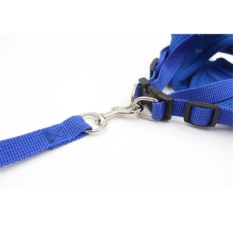 small dog harness (10)