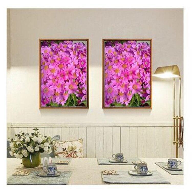 Gambar Sayatan Vertikal Bunga Kembang Sepatu Gambar Bunga