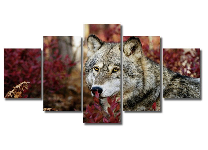 Animal Snow Wolf 5d full spuare&round 5d diamond painting crystal Painting diamonds decorative 5d diy diamond embroidery kits