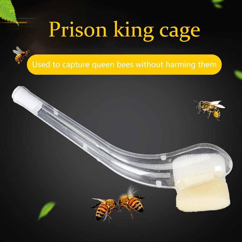 Plastic Pipe Beekeeper King Cage Bee Beekeeper Queen Catching Cage Effectively Capturing Bees Beekeeping Equipment Tool