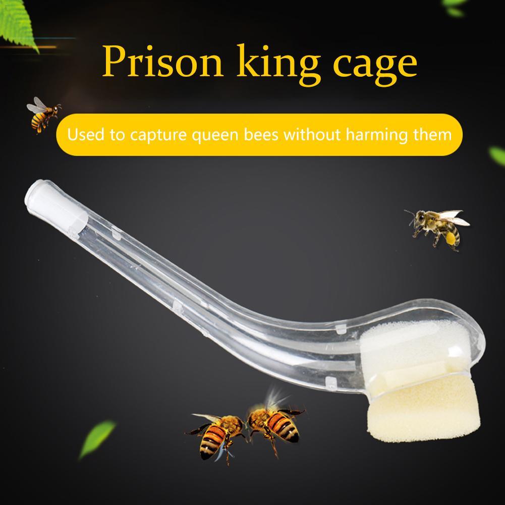 Plastic Pipe Beekeeper King Cage Bee Beekeeper Queen Catching Cage Effectively Capturing Bees Beekeeping Equipment Tool