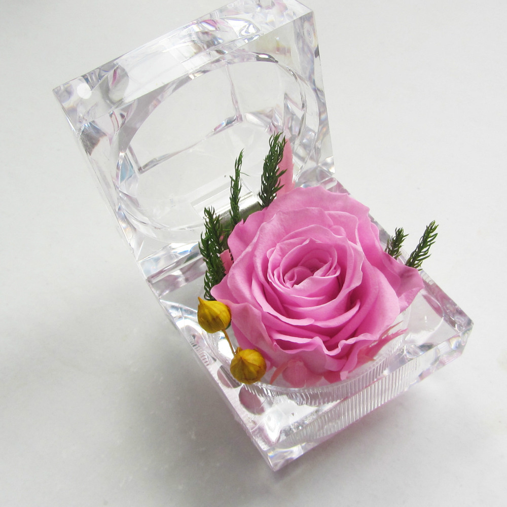 6colors Eternity Ring Box Preserved Flower Wholesale Flower Gifts