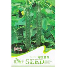Cucumber Seed * 1 Packet 20 Seeds * Cucumis Sativus * Chinese cucumber * Half-hardy Annual * Vegetable Seed(China)