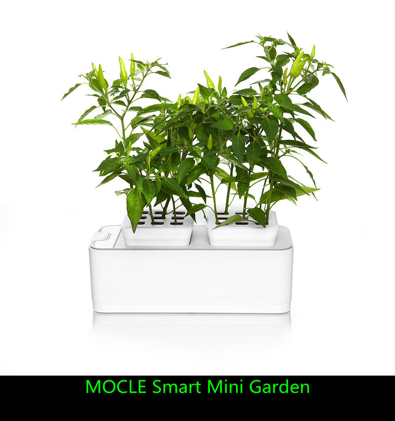new arrive mocle smart mini garden better than hydroponics aerogarden kitchen electonic. Black Bedroom Furniture Sets. Home Design Ideas
