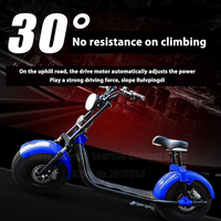 Citycoco Electric Scooter Motorcycles Cycling Bicycle Bike 1000W Lithium Battery With Airbag Damping Wide Tire LED Light