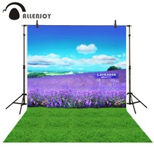 Allenjoy camera photography natural scenery Background purple Lavender grass lawn sky Photo background vinyl For a photo shoot