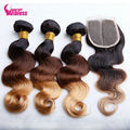 Top 8A Malaysian Virgin Hair Ombre 1B/4/30 Lace Closure With Bundles Ombre Hair Extensions With Closure Alibless Hair Products