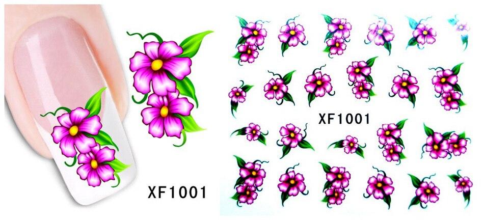 XF1001 -