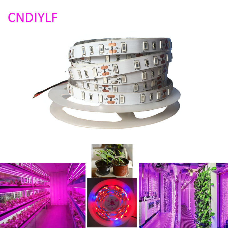 Ny 5730/5630 Plant Grow SMD LED Strip Light 5m / 20W 12V 300LED 5R1B Ikke-vanntett Fast Shipping