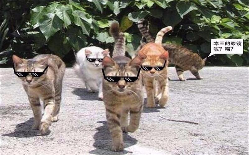 HTB1cR.Gam3PL1JjSZPcq6AQgpXao - 2018 New Deal with it Glasses Thug Life Glasses Pixel Women Men Sunglasses Black Mosaic Sun Glasses