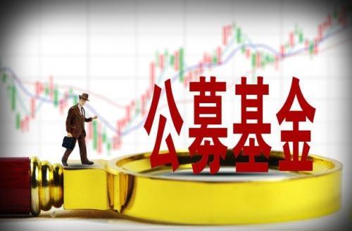 股票型基金