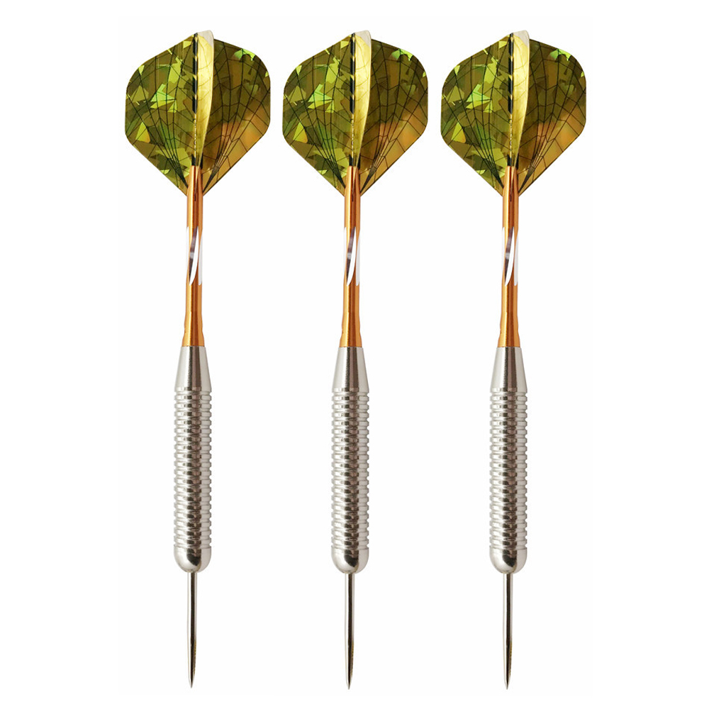 6pcs/pack 25g 161mm Length Professional Competition Metal Steel Tip Needle Darts Pet Flights Set for Indoor Dart Game