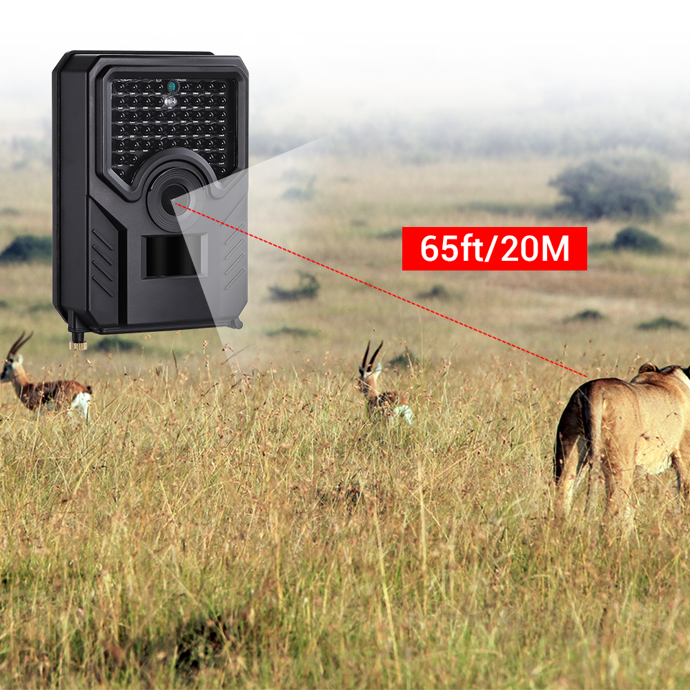 Image 5 - BOBLOV PR200 12MP 49PCS IR Leds Trail Hunting Camera FHD 1920*1080P 25FPS Waterproof Scouting Trail Camera BLACK-in Hunting Cameras from Sports & Entertainment