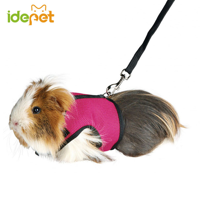 Hamster rabbit harness and leash set ferret guinea pig small animal hamster rabbit harness and leash set ferret guinea pig small animal pet walk lead publicscrutiny Image collections