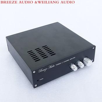 Breeze Audio &Weiliang audio SL1 TAS5630 2.1 Channel Home audio digital power amplifier 150WX2 300WX1 фото